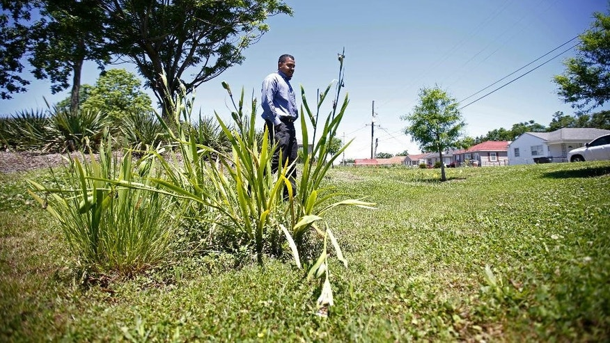 In this Thursday, May 5, 2016 photo, Brian Burns, project massager for the New Orleans Redevelopment Authority, walks through a rain garden in the Gentilly neighborhood of New Orleans. This particular lot can hold some 89,000 gallons of storm-water. In a metamorphosis, New Orleans - once overwhelmed by failed levees and Hurricane Katrina's floodwaters - is moving to become a national model of how an urban center can embrace green tactics to tame water.(AP Photo/Gerald Herbert)