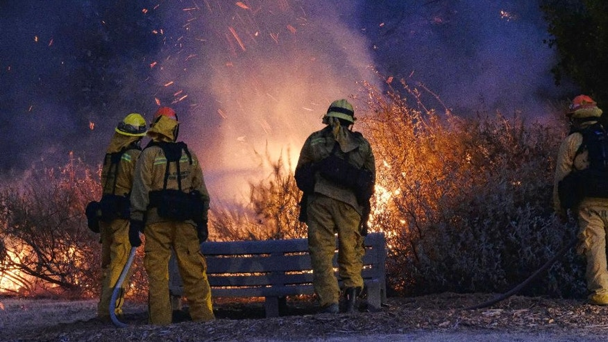 Firefighters douse a brush in the foothills outside of Calabasas, Calif. on Saturday, June 4, 2016. A fast-moving brush fire sweeping through hills northwest of downtown Los Angeles has damaged homes and prompted neighborhood evacuations. Los Angeles County fire officials now say the brushfire is threatening about 3,000 homes in the Calabasas neighborhood. (AP Photo/Richard Vogel)