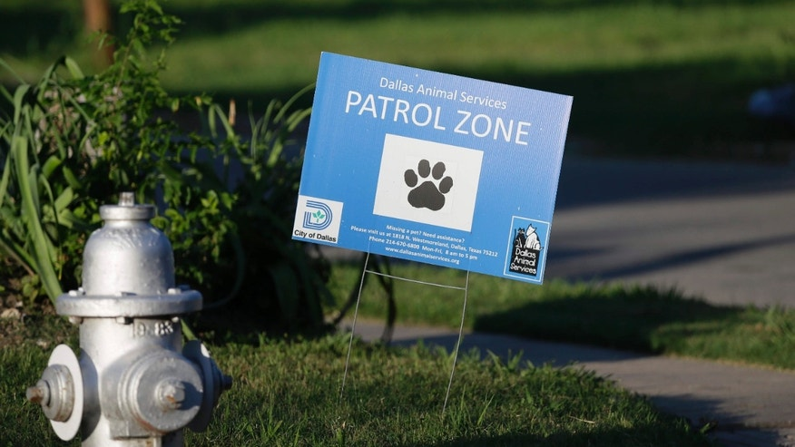 In this Friday, June 17, 2016 photo, a sign tells of animal control efforts in the neighborhood where a homeless woman was killed by a pack of stray dogs in Dallas.