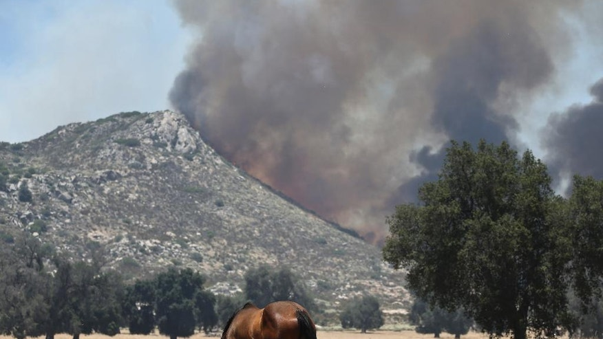 A horse grazes as a nearby mountain is engulfed in a brush fire Wednesday, June 22, 2016, in Campo. Calif. (AP Photo/Lenny Ignelzi)