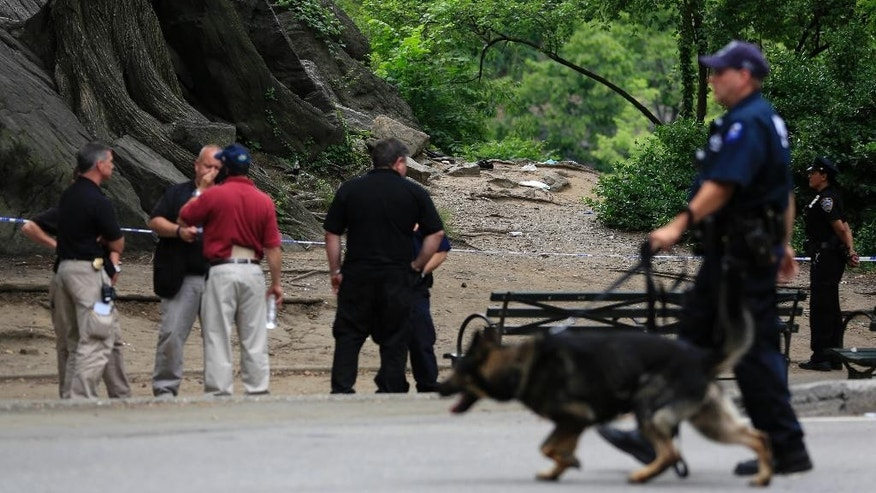 FILE - In this July 3, 2016 file photo, emergency officials work near the scene of an explosion in New York's Central Park after a man stepped on a plastic bag containing a homemade explosive and lost his lower left leg and foot. Police said Thursday, July 14 the substances found in their investigation of the explosive device are legally available for sale in hardware stores and can be used with other products to develop homemade explosive devices. Investigators say they believe the explosive was made by someone experimenting with commercially available products. (AP Photo/Seth Wenig, File)