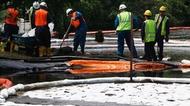 Crews clean up oil, from a ruptured pipeline, owned by Enbridge Inc, near booms and absorbent materials where Talmadge Creek meets the Kalamazoo River as in Marshall Township, Mich., July 30, 2010.  (AP Photo/Paul Sancya)