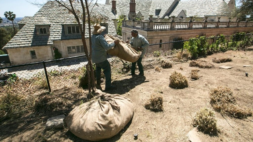 FILE - In this April 8, 2015 file photo, gardeners remove grass plants trimmed ahead of planned watering reductions at the Greystone Mansion and Park in Beverly Hills, Calif. State regulators say most communities in drought-stricken California remained on target for saving water in June, the first month that put local leaders back in charge of conservation. State water regulators on Tuesday, Aug. 2, 2016, will release figures as California endures its fifth year of drought. (AP Photo/Damian Dovarganes, File)