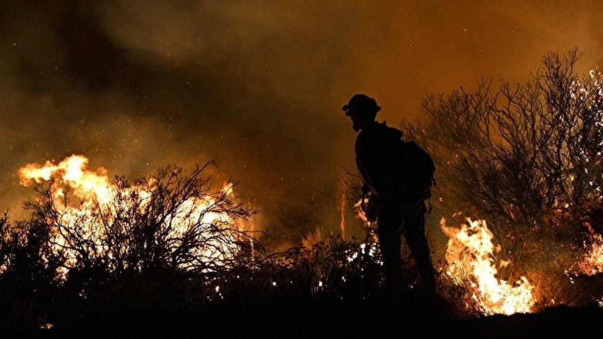 Cal Fire firefighter sets a backfire as he is silhouetted against the fire on Lone Pine Canyon Rd. in Wrightwood, Calif. early Wednesday, Aug. 17, 2016. Officials in charge of the battle against California's newest huge wildfire estimate that only about half of the 4,500 residents of the threatened town of Wrightwood have complied with evacuation orders. The fire is climbing the flanks of the San Gabriel Mountains, where Wrightwood sits at an elevation around 5,900 feet. (AP Photo/Rick McClure)