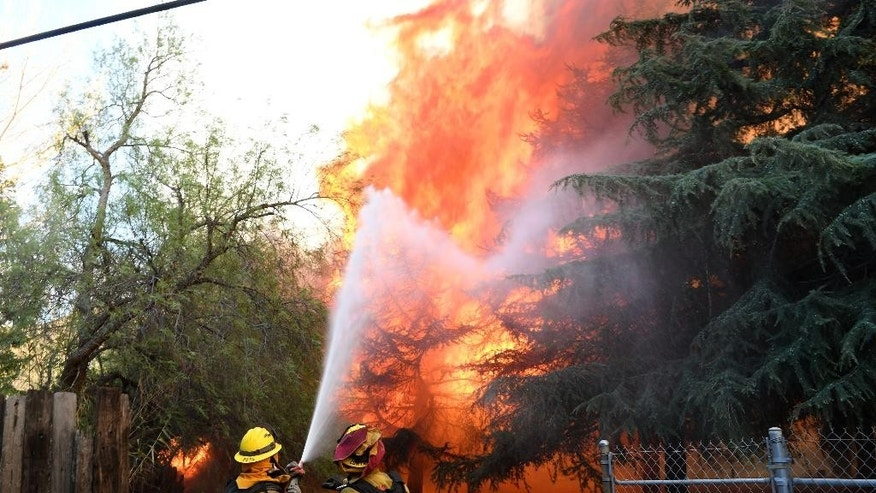 Cal Fire firefighters battle the Bluecut Fire along Cajon Blvd in Devore, Calif, on Wednesday, Aug. 17, 2016. (David Pardo/The Victor Valley Daily Press via AP)