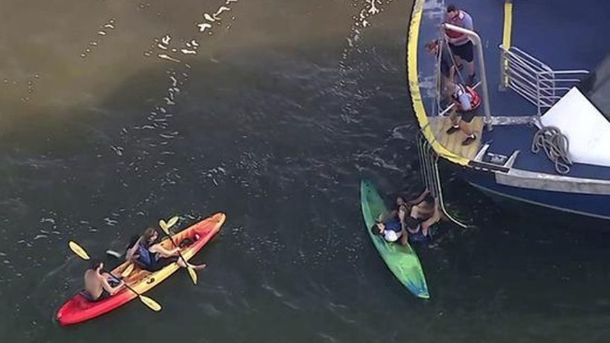 This image made from a video provided by WABC-TV shows kayakers being rescued on the Hudson River, Tuesday, Aug. 30, 2016, on the west side of Manhattan. New York authorities say multiple kayakers were injured when they were hit by a ferry on the river on Tuesday. (WABC-TV via AP)