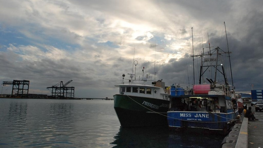"In this May 13, 2016 photo, U.S. fishing boats that are crewed by undocumented foreign fisherman are docked at Pier 38 in Honolulu. In Hawaii, federal contractors paid to monitor catches said they are troubled by what they've seen while living weeks at a time at sea with the men. ""You get that sort of feeling that it's like gaming the system,"" said Forest O'Neill, who coordinates the boat observers in Honolulu. ""It's a shock. It becomes normal, but it's like, 'How is this even legal? How is this possible?' ... They are like floating prisons."" (AP Photo/Caleb Jones)"