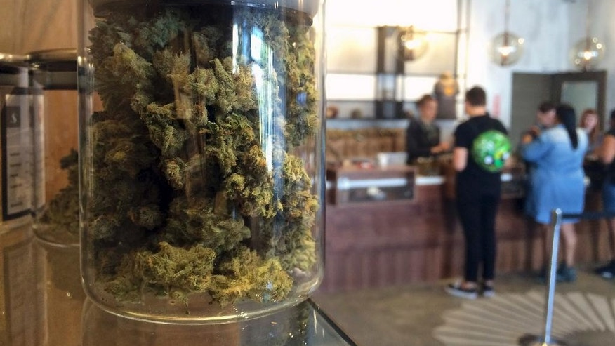 File - In this April 20, 2016 file photo, customers buy products at the Harvest Medical Marijuana Dispensary in San Francisco. From California, with its counterculture heritage, to the fishing ports and mill towns of Maine, millions of Americans in nine states have a chance to vote Nov. 8 on expanding legal access to marijuana. Collectively, the ballot measures amount to the closest the U.S. has come to a national referendum on the drug. (AP Photo/Haven Daley, File)
