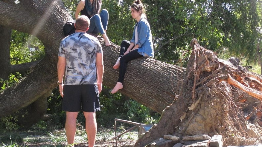 Chad Brock talks with twin sisters Lauren Pizzi (left) and Sarah Pizzi as they sit atop a fallen tree Monday, Oct. 10, 2016, in Greene Square in downtown Savannah, Ga. Hurricane Matthew bushwhacked Savannah as it raked the Georgia coast over the weekend, causing extensive damage to the historic city's signature tree canopy.  (AP Photo/Russ Bynum)