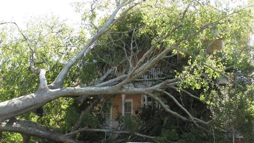 The top of a tree knocked down by Hurricane Matthew smothers the entire front of a large Victorian home near downtown Savannah, Ga., on Monday, Oct. 10, 2016. Matthew bushwhacked Savannah as it raked the Georgia coast of over the weekend, causing widespread damage to the historic city's signature tree canopy.  (AP Photo/Russ Bynum)