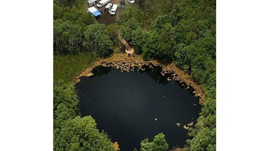 The Eagle's Nest dive site in Weeki Wachee, Fla.