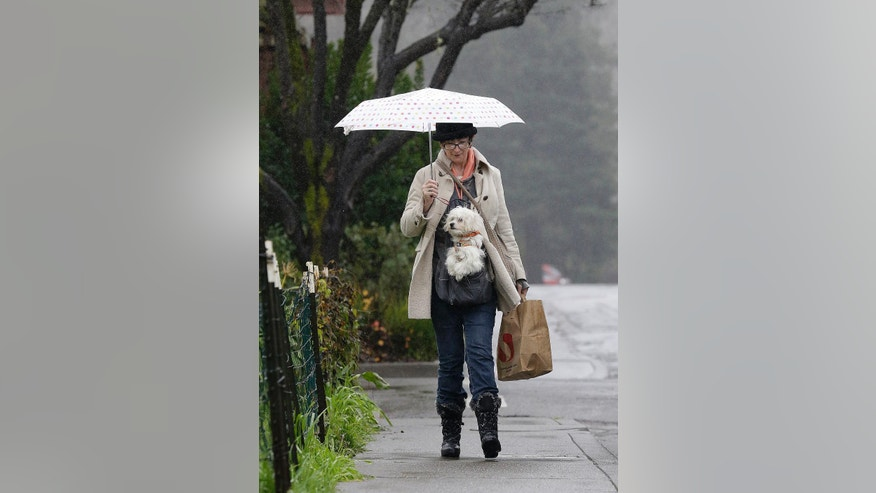 Gracie McKeowen carries her dog Rocky as she walks in the rain in Guerneville, Calif., Saturday, Jan. 7, 2017. On the California coast, weather forecasters anticipate a storm surge from the Pacific called an atmospheric river to dump several inches of rain from Sonoma to Monterey counties, and up to a foot in isolated places in the Santa Cruz mountains. (AP Photo/Jeff Chiu)