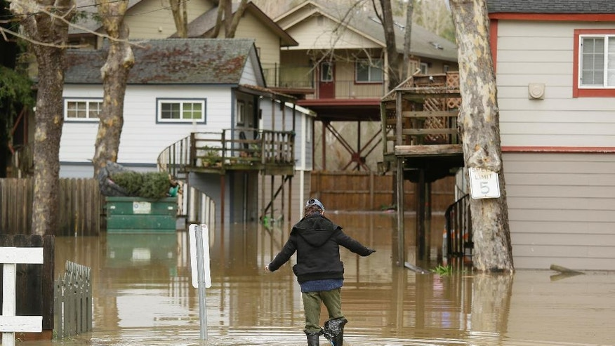Melba Martinelli tries to keep her balance walking through flood water to her home Monday, Jan. 9, 2017, in Guerneville, Calif. A massive storm system stretching from California into Nevada lifted rivers climbing out of their banks, flooded vineyards and forced people to evacuate after warnings that hillsides parched by wildfires could give way to mudslides. (AP Photo/Eric Risberg)