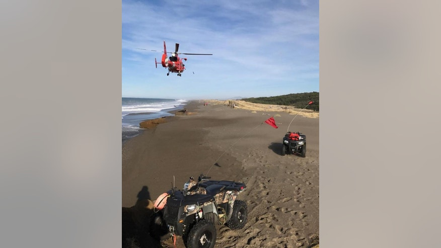 In this photo provided by the Oregon State Police taken Sunday, Jan. 15, 2017, a U.S. Coast Guard helicopter searches a beach about two miles north of Cape Blanco, Oregon, where a father and his young son were swept out to sea Sunday as they walked near the surf. (Oregon State Police via AP)