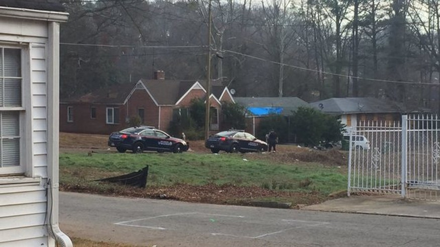 Pit bull owner arrested after dogs kill child in Atlanta