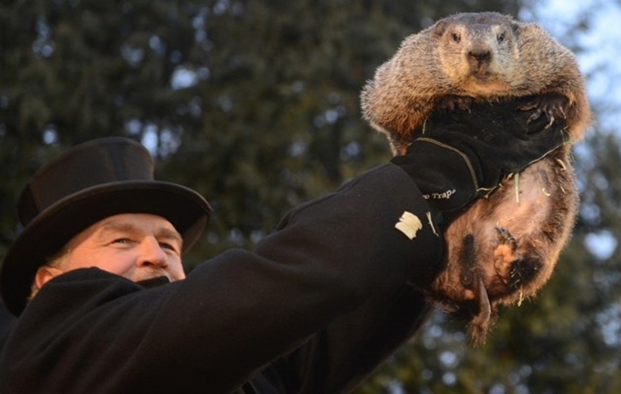 Handler John Griffiths introduces Punxsutawney Phil to the crowd at Gobbler's Knob on the 131st Groundhog Day in Punxsutawney, Pennsylvania, U.S. February 2, 2017. Punxsutawney Phil, a famed U.S. groundhog emerged from his burrow on Thursday and predicted six more weeks of winter weather. REUTERS/Alan Freed     TPX IMAGES OF THE DAY - RTX2ZBIP
