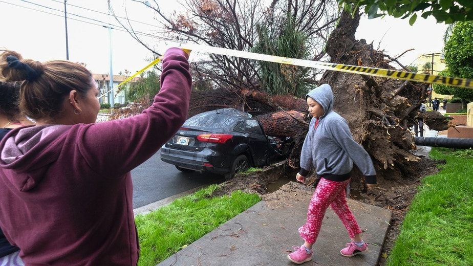 Neighbors walk by a fallen tree that crused a car Saturday, Feb. 18, 2017, in Sherman Oaks section of Los Angeles. A huge Pacific storm parked itself over Southern California and unloaded, ravaging roads and opening sinkholes.   (AP Photo/Ringo H.W. Chiu)