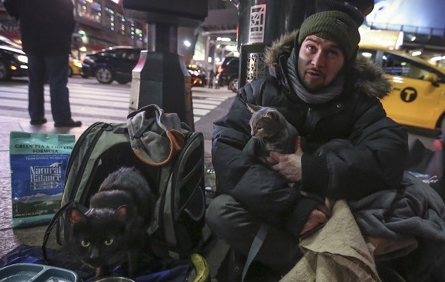 Keith Rosario sits with his cats Storm and Molly (L) as he panhandles on the street outside Pennsylvania Station in the Manhattan borough of New York, January 5, 2016. REUTERS/Carlo Allegri - RTX216YU