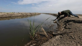 FILE- In this May 18, 2015, file photo, Gino Celli draws a water sample to check the salinity in an irrigation canal that runs through his fields near Stockton, Calif. The U.S. Bureau of Reclamation on Wednesday, March 22, 2017, announced that farmers in California's San Joaquin Valley will receive 65 percent of their contracted supplies. This comes in one of California's wettest winters in years ending five years of punishing drought. (AP Photo/Rich Pedroncelli, File)