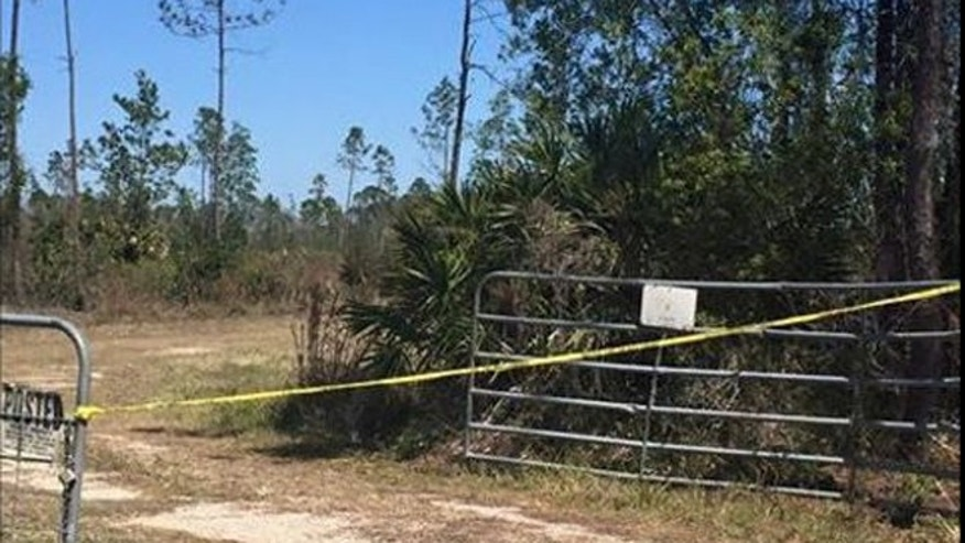 Police cordoned off the area where two small planes collided Saturday morning in Edgewater, Fla., leaving 2 people dead.
