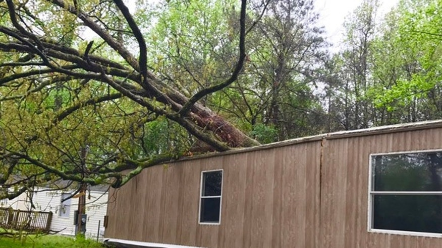 A tree fell on this home after a tornado touched down in Georgia.
