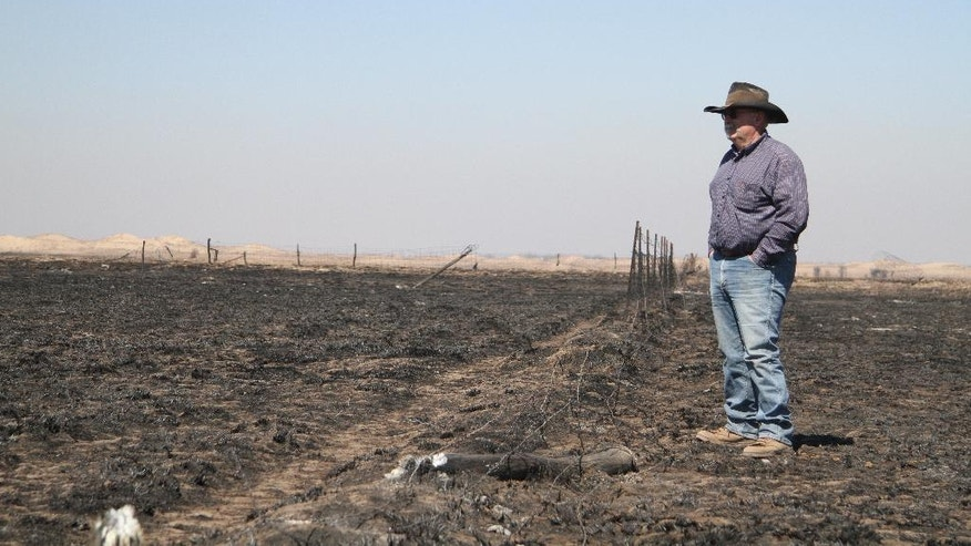 FILE - In this March 7, 2017 file photo, Greg Gardiner overlooks his fire-ravaged ranch following devastating wildfires, in Clark County, Ark. The Western mountains are flush with snow and California has canceled its drought emergency, but some farmers and ranchers on the high plains are struggling amid a lengthy dry spell and the aftermath of destructive wildfires. (Michael Pearce/The Wichita Eagle via AP, File)