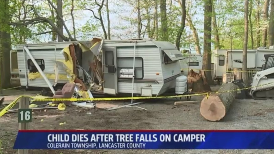 A Pennsylvania girl was killed early Sunday when a tree fell on her family's camper.