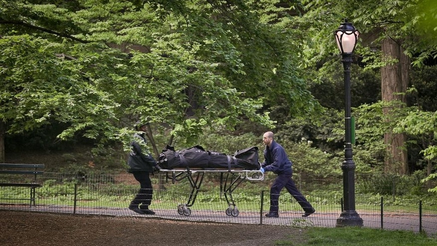 Medical examiner investigators remove a body found in a pond in Central Park, Wednesday May 10, 2017, in New York. The discovery came a day after the body of another man was recovered in the Jacqueline Kennedy Onassis Reservoir in the park. New York City police say the deaths of two men found in Central Park lakes don't appear to be crime-related. (AP Photo/Bebeto Matthews)