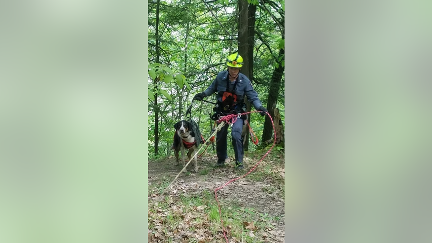 "In this photo provided by New York State Office of Parks, Recreation and Historic Preservation, New York State Parks Police Officer Ryan Clancy, escorts ""Skippy"" just after using a harness and ropes to rescue the dog."