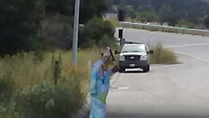 A California man dressed as a clown and held a bloody machete over his head on the side of a highway on Wednesday, May 24, 2017.