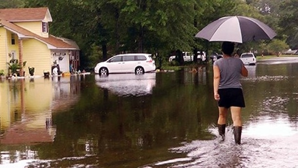 In this image taken from video, Erin West walks down a flooded street in her neighborhood after Tropical Storm Cindy, Thursday, June 22, 2017, in Ocean Springs, Miss. Persistent drainage problems frustrate residents, some of whom couldn't drive to work because of the storm, West said, and others are worried about the possibility of alligators coming into their yards in the floodwaters. (AP Photo/Jay Reeves)
