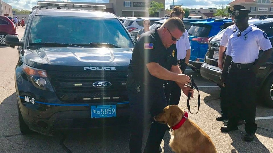 Police rescued a dog that was left in a car at a Massachusetts outlet mall.