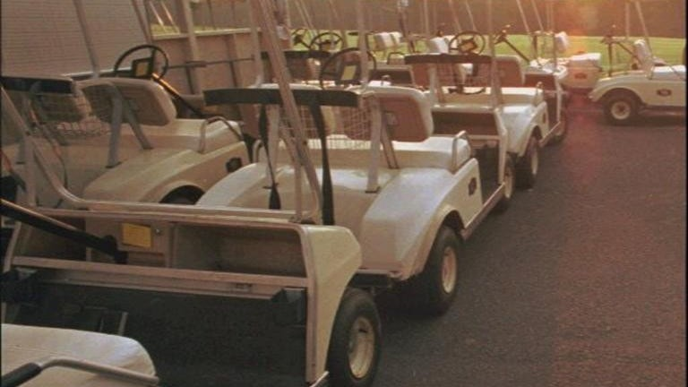Freak Golf Cart Incident Kills Florida Woman Who Famously Sought