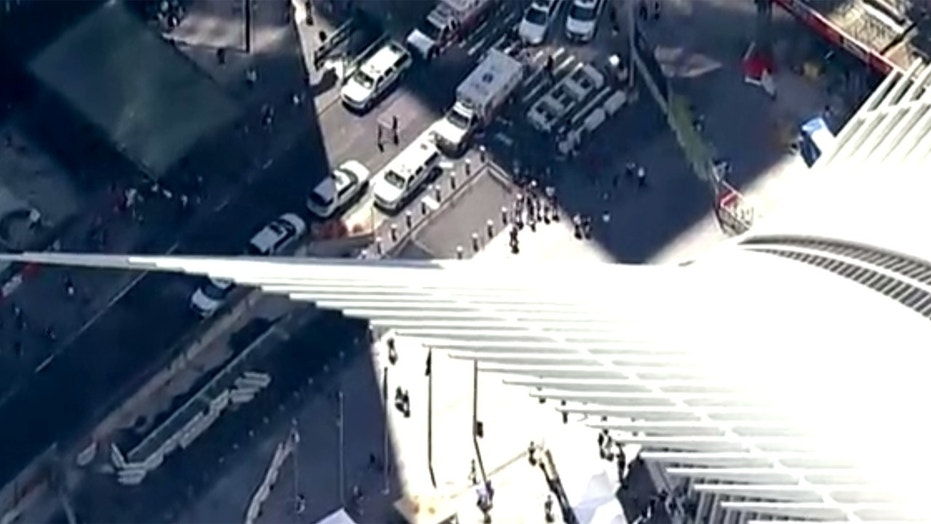 A man was seriously injured after he fell off a balcony at the World Trade Center Oculus in New York.