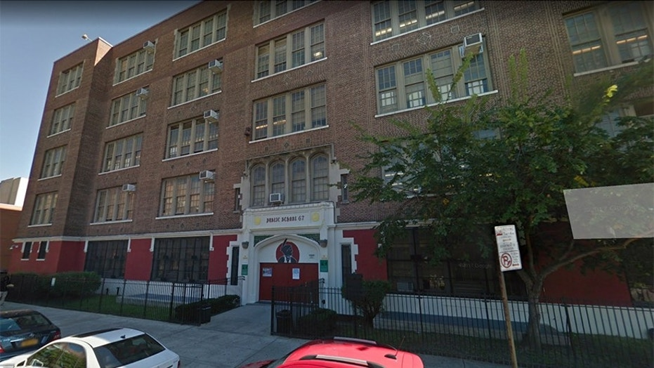 A student was stabbed to death Wednesday at the Urban Assembly School for Wildlife Conservation in the Bronx borough of New York City.