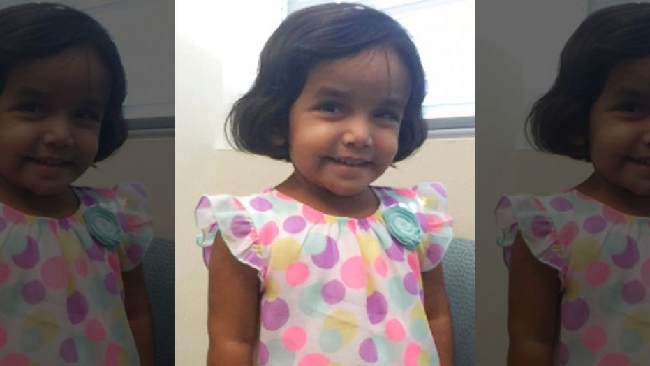 No breakthrough yet in tracing missing Indian toddler in US