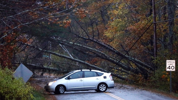 A motorist turns around after finding downed trees blocking Flying Point Road during a storm in Freeport, Maine, Monday, Oct. 30, 2017. A strong wind storm has caused widespread power outages. (AP Photo/Robert F. Bukaty)