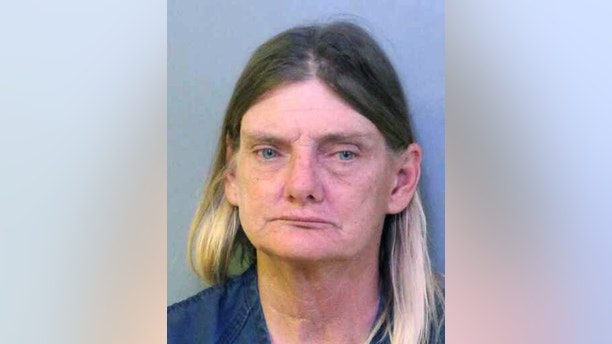 This undated booking photo made available by the Polk County Sheriff's Office shows Donna Byrne, of Lakeland, Fla. Law enforcement officials charged Bryne with driving under the influence while riding a horse down a busy Florida highway on Thursday, Nov. 2, 2017. She was also charged with animal neglect for endangering and failing to provide proper protection for the horse.(Polk County Sheriff's Office via AP)