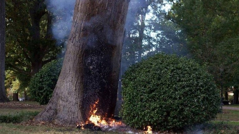 "A University of North Carolina Chapel Hill professor was burned after he tried to blow up the college's ""Tree of Knowledge"" on Thrusday."