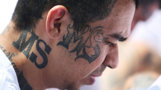 Mara Salvatrucha (MS-13) gang members wait to be escorted upon their arrival at the maximum-security jail in Zacatecoluca, El Salvador, June 22, 2017. REUTERS/Jose Cabezas - RTS189RS