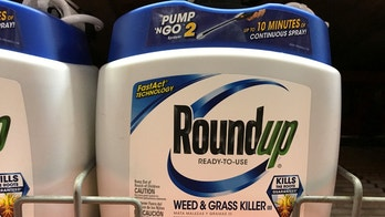 Monsanto Co's Roundup is shown for sale in Encinitas, California, U.S., June 26, 2017.  REUTERS/Mike Blake - RC1F291E2800