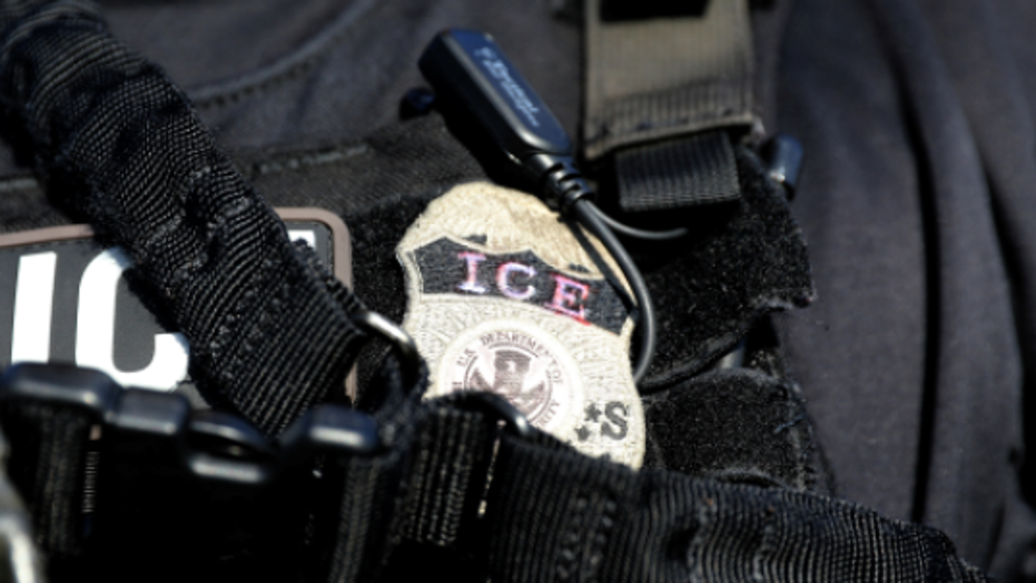 U.S. Immigration and Customs Enforcement (ICE) badge.
