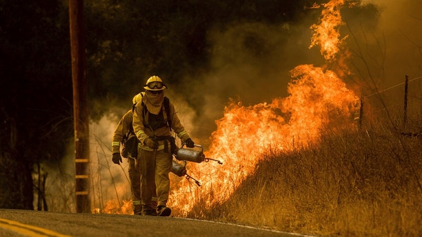 Firefighters light backfire while trying to keep a wildfire from jumping Santa Ana Road near Ventura, Calif., on Saturday, Dec. 9, 2017. (AP Photo/Noah Berger)