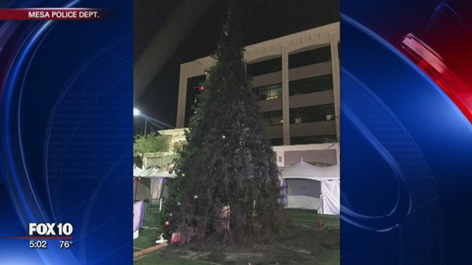 An Arizona man is accused of burning down Mesa's town Christmas tree.