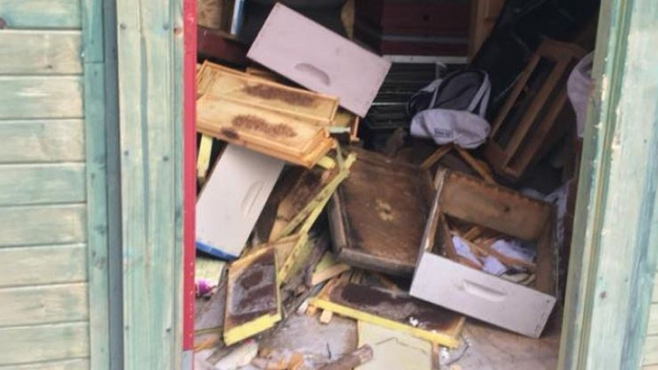 Vandals did $60,000 in damage to a local honey business in Sioux City, Iowa.