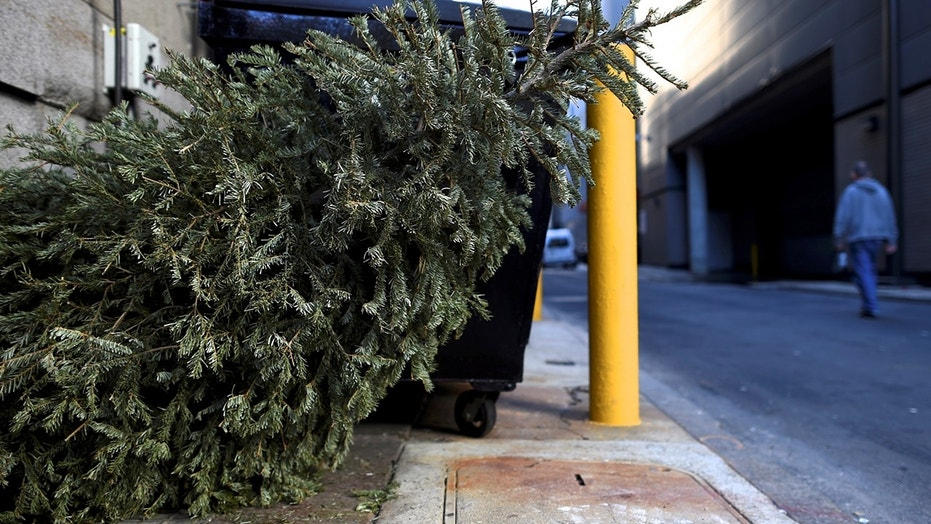 Got a dead Christmas tree? A California woman tried bringing it back for a refund -- and succeeded, a fellow shopper said.