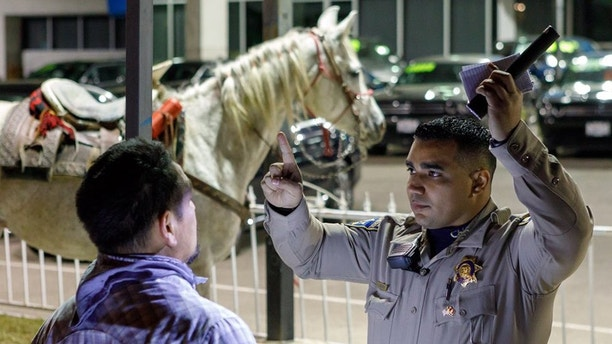 CHP: Drunk man rides horse onto SoCal freeway