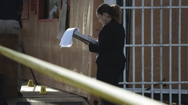 In this Thursday, Jan. 11, 2018 photo, a forensic workers takes notes at the scene where a man was found fatally shot, in San Juan, Puerto Rico. As the Island struggles to recover from Hurricane Maria, it is facing one of the biggest spikes in violent crime in nearly a decade amid a widespread power outage, severe unemployment and an increase in police absences. (AP Photo/Carlos Giusti)