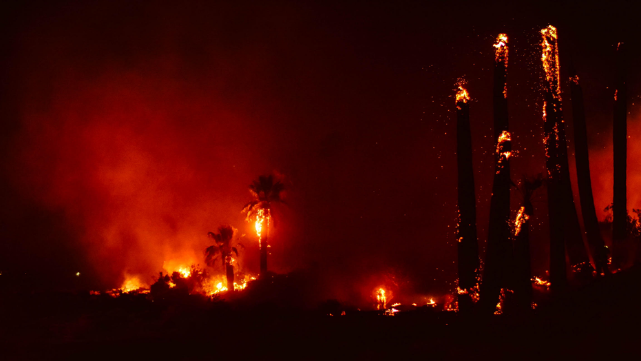 A fire broke out at Joshua Tree National Park in California Monday night, which officials are investigating as arson, the National Park Service said.