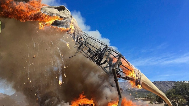 In a Thursday, March 22, 2018 photo provided by the Royal Gorge Dinosaur Experience, a life-sized animatronic Tyrannosaurus Rex at the Royal Gorge Dinosaur Experience in Canon City, Colo., is ablaze after an electrical issue, according to Royal Gorge Dinosaur Experience personnel. T-Rex was a total loss, but Zach Reynolds, co-owner of Royal Gorge Dinosaur Experience, hopes to have a replacement T-Rex before summer.  (Royal Gorge Dinosaur Experience via AP)